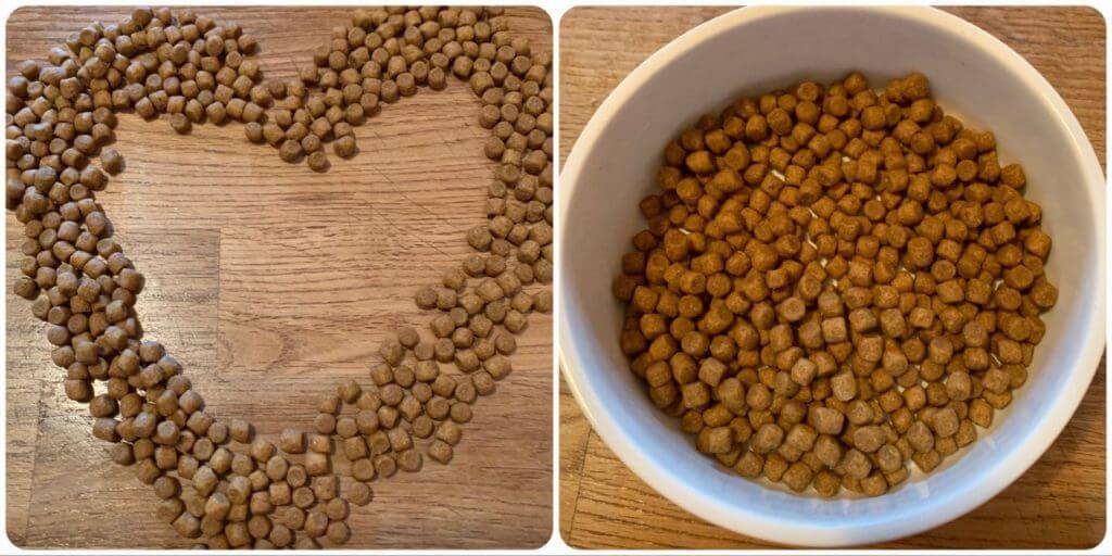 Hills Diet Diabetes Trockenfutter für Katzen