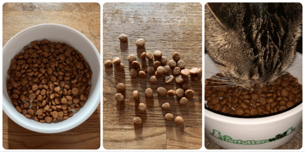 Lifelong Complete Trockenfutter für Katzen