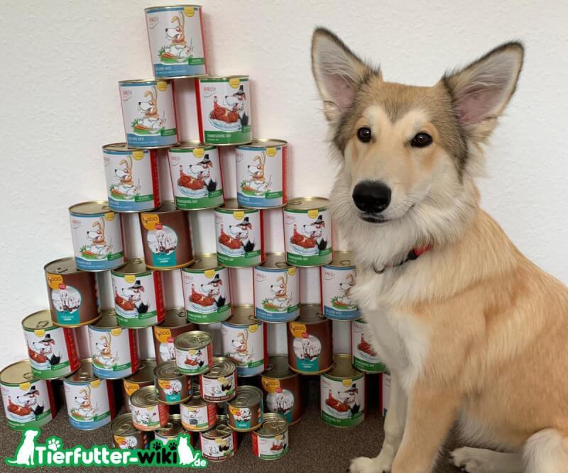 Anifit Hundefutter für Welpen