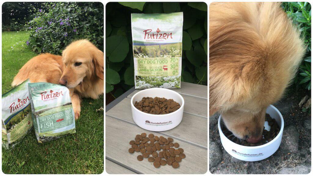 Purizon Hundefutter Test